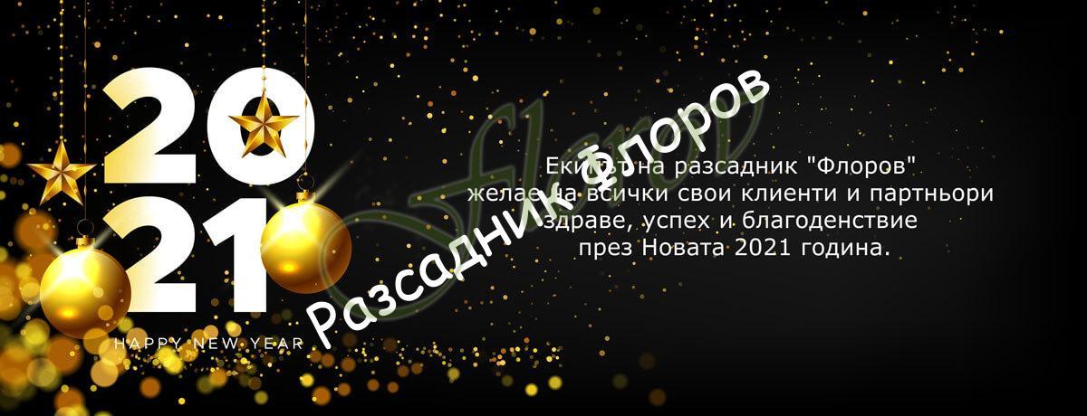 Честита нова година от Флоров